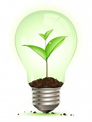 give ideas and grow your business