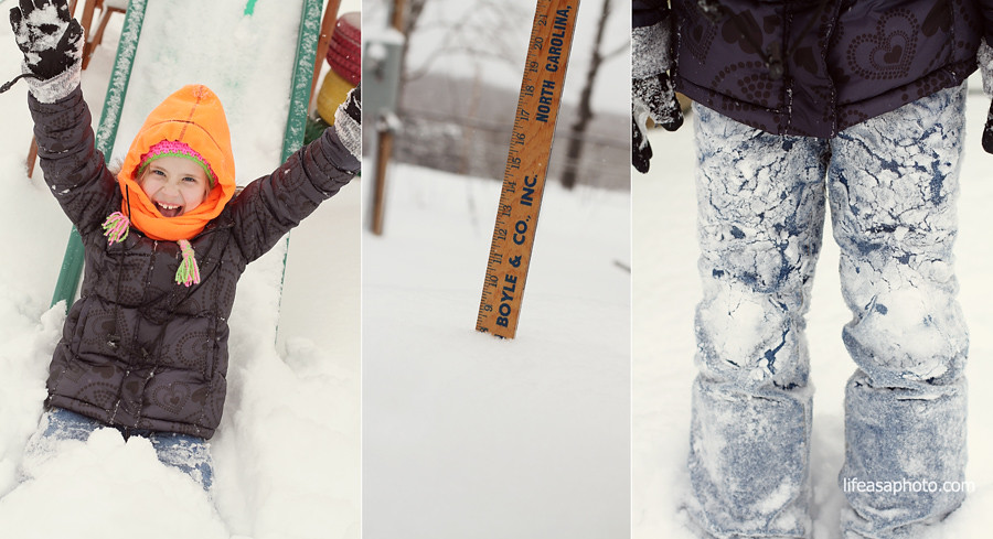 laykin snow 1 b