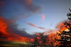 Sky in Color (Harry Lipson III) Tags: sunset sky orange cloud color sunshine clouds daylight skies view colorphotoaward panasonicgf1 harrylipsoniii harrylipson harryshotscom copyrightbyharrylipsoniiiallrightsreservednounauthorizedusagewithoutexpresswrittenconsent harrylipson3 iinviteyoutovisitmywebsiteharryshotscom theunsungphotographer theunsungphotographercom totalslackerphotographycom totalslackerphotography