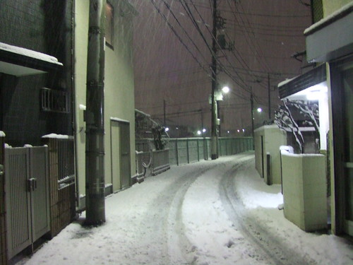 2011/2/14 White Valentine's Day