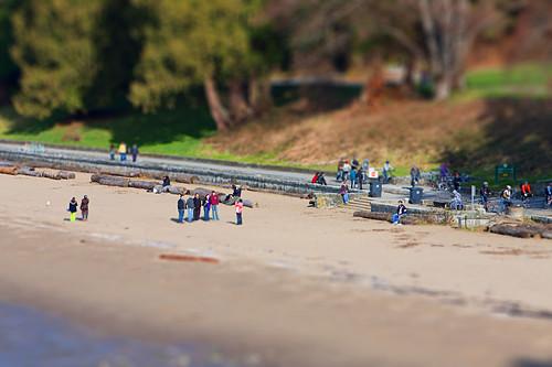 3rd Beach Model