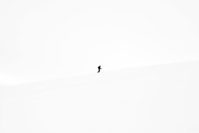 Lone Snowshoer