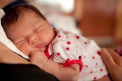 Meet Ruby (Penelope's Loom) Tags: family baby cute girl nikon 50mm14 niece newborn preemie ruby 3weeks d700