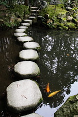 tenjuan /  (llus) Tags: japan kyoto   carps carp steppingstones nanzenji  tenjuan