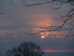 Morgenhimmel (Hans-Jürgen Böckmann) Tags: sun sunrise germany deutschland sonne sonnenaufgang schleswigholstein 2011 ostholstein gronenberg