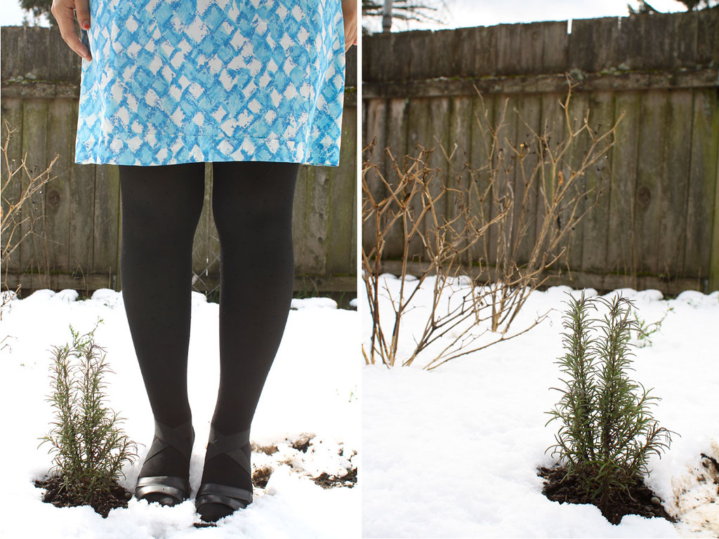 snow day, tights, little ocean annie