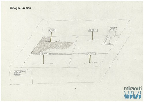 Disegna un orto 5A 12