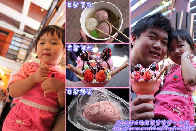 2011.02.27 大湖草莓塞塞塞一日遊-2