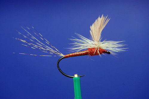 Rusty Hendrickson Spinner