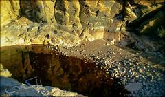 C360_2011-02-23 17-17-36 (MagicPAD - الكعبي) Tags: uae الإمارات الجزيرة الظاهر ناصر الكعبي الخطوة مصح محضة