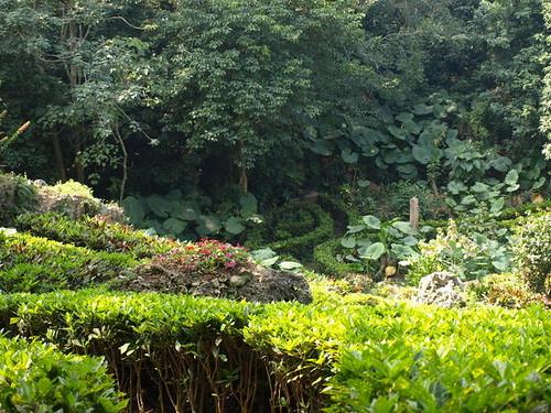 美如仙境的私闢休息區,卻是佔用自然公園,造成生態災難。圖片來自:柴山會部落格。