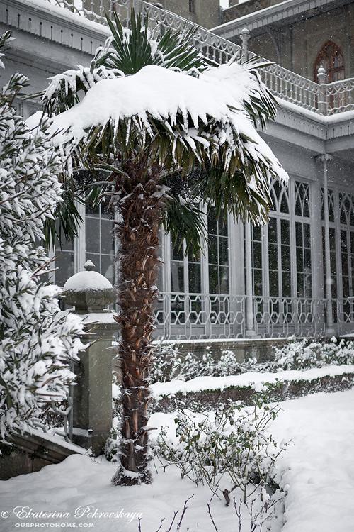 Voroncov_palace__winter_32