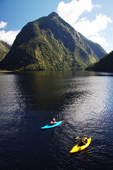 Kayaking on Doubful Sound (Colin Hodges) Tags: newzealand kayak southisland fjord doubtfulsound