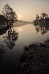 A l'aube... (Ludovic PONZIO (ex OIZNOP)) Tags: soleil eau lac bretagne reflet arbres morbihan matin aurore rive aube beignon potronminet