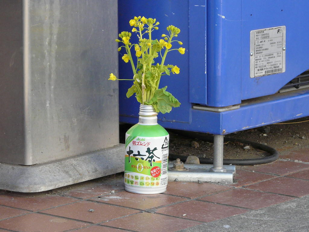 Smoking Spot Beautification in Can and Flowers