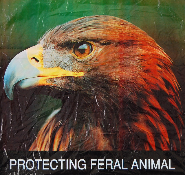 protecting feral animal