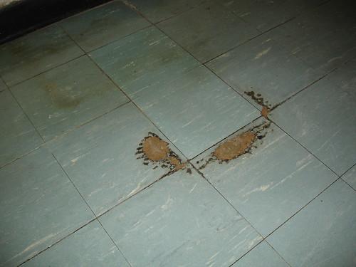 Flickriver Photoset Asbestos Floor Tile Flooring By Asbestorama