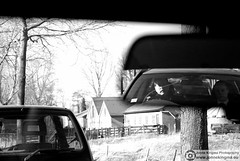 The rear-view mirror project #14 (Just a guy who likes to take pictures) Tags: auto road street city trees light portrait bw en white house man black holland tree male haarlem netherlands monochrome dutch grass car fence project photography mirror und bomen waiting europa europe fotografie photographie view traffic farm candid capital rear north nederland thenetherlands boom wait holanda mister gras nl huis portret herr zwart wit weiss paysbas schwarz stad nord wachten noordholland niederlande hek noord boerderij zw the mannen verkeer wagen weis meneer achteruitkijkspiegel wacht projecten hoofdstad