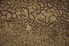 Mud Texture (jrenphoto) Tags: texture photography mud jren