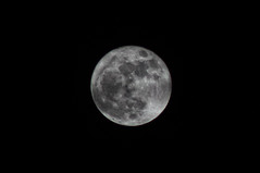 Supermoon (Dar.shelle) Tags: moon night canon space stevens craters telephoto 7d astronomy universe supermoon darshelle