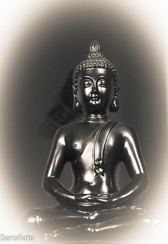 Buddha by Rune Mo