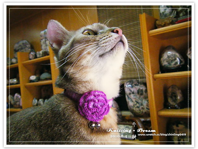 momo紫色花項圈1