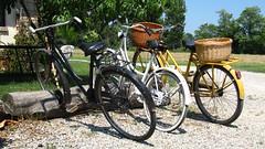 In attesa... (Luca +10) Tags: italy bicycle luca italia bikes bici bicicletta biciclette desafiourbano luca10