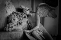 Vienna (giuliafaillaci) Tags: vienna angel austria maria monumento cristina lion angelo gita leone viaggio ultimo canova anno funebre distruzione daustria