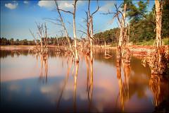 Qu'avons-nous fait? (vedebe) Tags: couleurs nature paysages paysage cologie pose longue poselongue