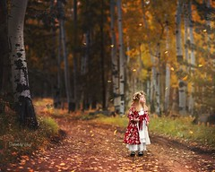 Seasonal wonders (Portraits by Suzy) Tags: color nature fall autumn child childhood fashion dress red leaves leaf falling canon 6d aspens trees tree overlay girl wonder story portraits by suzy mead las vegas photographer family natural light