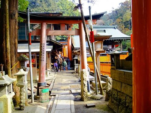 Narrow torii