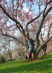 Me and the Magnolias