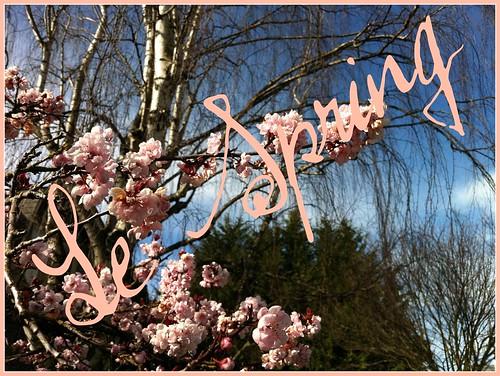 Le Spring