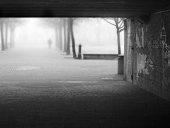 Foggy park #3 (angelocesare) Tags: park bridge parco mist man fog ponte uomo nebbia angeloamboldiphotos