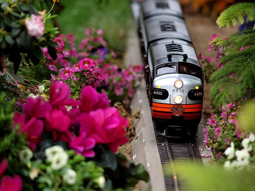 Harley Train