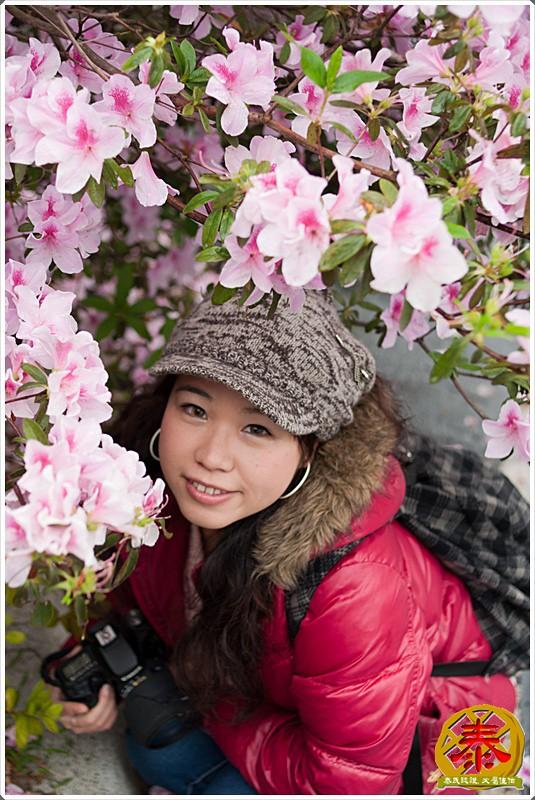 2011-03-26-台大杜鵑花 (3)