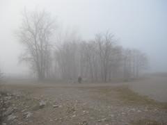 IMG_4558 (Andre Vautour) Tags: favorite mist toronto man beach bike misty fog evening blog published gray foggy favorites pale mysterious bikeride cinematic beach2 cherrybeach portoftoronto beachset johnellison mistyeveni