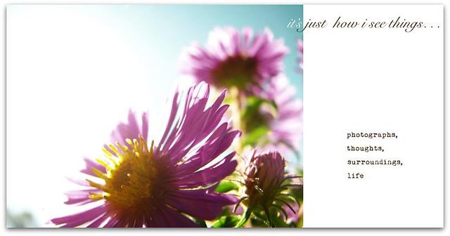 blog banner spring 2011 {final}