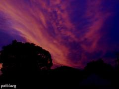 Sunset (pat.bluey) Tags: sunset sky clouds silhouettes 1001nights newsouthwalesaustralia flickraward spiritofphotography
