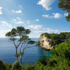 Shady pine trees along the steep coastline of Galdana (Bn) Tags: park santa wood blue trees sea sum