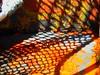 Layered abstract (peggyhr) Tags: wood blue brazil orange brown sunlight white sc yellow grey paint shadows florianópolis barradalagoa textures thegalaxy creativephoto topseven anawesomeshot peggyhr heartawards colourartaward artisticimpressions goldstaraward thebestshot vanagram thedigitographer 100commentgroup thelightpainterssociety mygearandme lomejordemisamigos avpa1maingroup ►thebestshots◄ 3r1c♥abstract♥abstrato♥abstracto♥ 1537ap