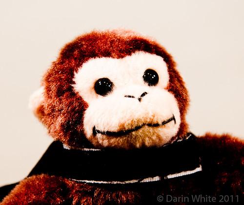 Project Loud Monkey 090