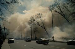 control burn (tomms) Tags: toronto fire highpark forestry smoke controlburn keelestreet