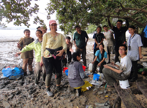 Mega Marine Survey: Muddy volunteers!