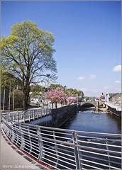 BRIDGEND, SOUTH WALES. (IMAGES OF WALES.... (TIMWOOD)) Tags: trees southwales wales river rails cherryblossom railings riverwalk bridgend oldstonebridge ogmoreriver bridgendcounty mygearandme treesonyalphaa700timwoodgallery