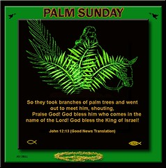PALM SUNDAY 2011 (fantartsy JJ *2013 year of LOVE!*) Tags: flowers roses love nature beauty easter heaven god prayer lord christian gift offering bouquet motherteresa lent ashwednesday bibleverse christianart blueribbonwinner supershot bej godswill anawesomeshot flickrdiamond rubyawards thesuperbmasterpiece
