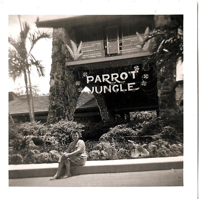 parrotjungle