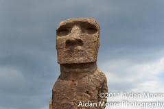 Alone (Aidan Moore Photography) Tags: 50mm nikon af nikkor f18