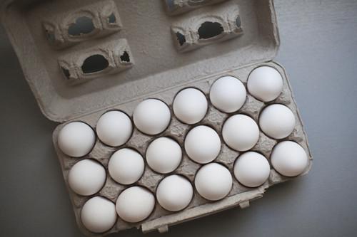 eggs1 copy
