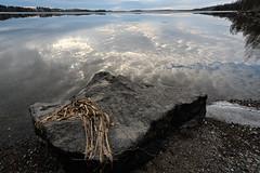 Lake Pyhjrvi reflections (Mika Hirsimki) Tags: lake ice nature water rock canon reflections suomi finland arboretum shore fi tampere kivi sora gravel vesi pinta luonto ranta jrvi j heijastus heijastuksia heijastukset pyhjrvi tyyni pirkanmaa canon1dmarkiii vesist